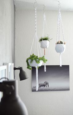 Edler Kontrast im Wohnzimmer: Betonwand trifft moderne Blumenampeln |