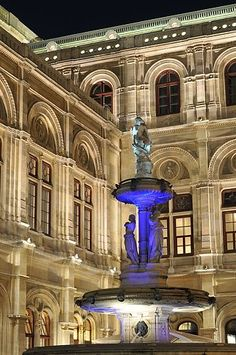 A fountain outside of the Vienna State Opera House. AUSTRIA Beautiful at night!