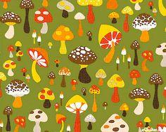 Toadstools & Shrooms