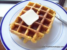 Coconut flour waffles, GAPS, SCD, Primal, gluten free, grain free, and Low Carb.  High protein and great for breakfast or to use as sandwich 'bread'