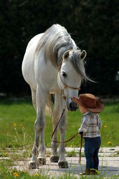 there's something about the powerful horse showing such tenderness to a child...