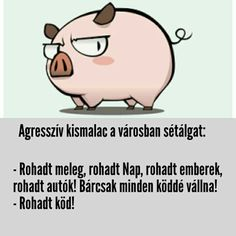 Agresszív Kismalac viccek Humor, poén I Laughed, Life Hacks, Funny Pictures, Funny Quotes, Jokes, Lol, Meme, Lifestyle, Humor