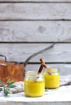 Recipe for turmeric paste Vedic Golden Milk (vegan) at www.Earthsprout.com