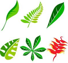 Free leaf vector art package free vector graphics all free web