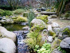 Japanese Gardens, Woodward Park,  Fresno, California