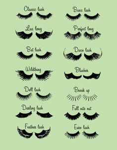 A huge variety of lashes!