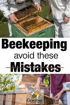 10 Beginner Beekeeping Mistakes You Can Avoid Hey everyone makes mistakes, it's a part of learning. But if you can avoid some common beginner beekeeper mistakes…. that's a good thing! How To Start Beekeeping, Beekeeping For Beginners, Honey Bee Hives, Honey Bees, Funny Bird, Bee Hive Plans, Shade Grass, Raising Bees, Bee Boxes