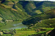 Douro River ( Portugal)