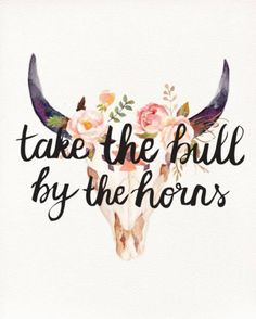 take the bull by the horns quote typography