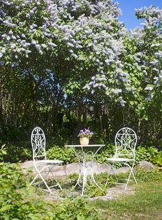 Sininen rintamamiestalo   Meillä kotona Arch, Outdoor Structures, Garden, Homes, Longbow, Garten, Houses, Lawn And Garden, Gardens