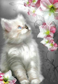 Greatest Cats and their stories from different homes of the world. Cute Kittens, Cats And Kittens, Pretty Cats, Beautiful Cats, Pretty Kitty, I Love Cats, Crazy Cats, Gato Gif, Photo Chat