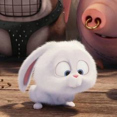 Rabbit Wallpaper, Bear Wallpaper, Snowball Rabbit, Cute Bunny Cartoon, Secret Life Of Pets, The Good Dinosaur, Pet Rabbit, Cute Cartoon Wallpapers, Cute Disney