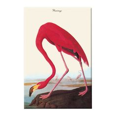 A lovely addition to your living room or master bath, this charming canvas print showcases a flamingo motif. Made in the USA.   Pro...