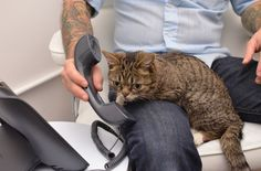 """Yes?"" 