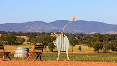 There are plenty of things to do in Mudgee.  #seeaustralia #travel2next