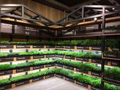 Albert Heijn supermarket has opened the first instore farming unit of the Netherlands!! In the AH XL Purmerend Klant kan zelf oogsten door middel van een schaartje en kan zo bepalen hoeveel hij of zij wil, keuze uit een assortiment van dertien verschillende kruiden #InstoreFarmin