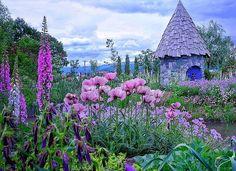 ノームの庭@上野ファーム 上野ファームは 2008年のフジテレビのドラマ 倉本聰の「風のガーデン」 …を手がけた上野砂由紀さん のガーデンです。 今年は ノームの庭がグランドオープン✨ ノームの庭のコンセプトは 北海道型ナチュラリスティックガーデン 300品種以上の植物を楽しむことができます♪ #上野ファーム#はなまっぷ#北海道#主婦カメラ#カメラ好きな人と繋がりたい#hokkaidolikers#trippinohokkaido#lovely_flowergarden#whim_fluffy#nature_special_#wp_flower#rainbow_petals_#b.ptals#eyecatching_pics