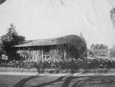 Ezra S. and Mrs. Jeanna C. Carr's cabin, in Pasadena. ca 1901?