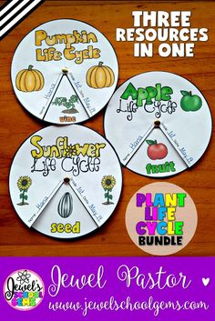 Plant Life Cycle Bundle (Apple, Pumpkin and Sunflower Life Cycle Wheels) by Jewel Pastor (TeachersPayTeachers) | GET THREE PLANT LIFE CYCLE WHEELS FOR THE PRICE OF TWO! | This PLANT LIFE CYCLE WHEEL BUNDLE is the perfect resource to help your students review what they have learned about the life cycle of apples, pumpkins, and sunflowers. | See them individually (Apple Life Cycle, Pumpkin Life Cycle and Sunflower Life Cycle) or buy this BUNDLE and SAVE!