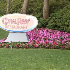 Coral Reef Restaurant  in EPCOT at Walt Disney World