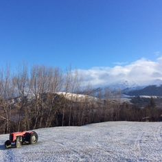 How chilly does this poor lonely red tractor look? Central Otago, Lonely, Tractors, June, Red, Loneliness