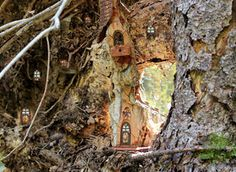 Spider House by ForestDwellerHouses