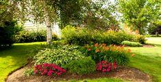 Projets d'aménagements paysagers - Lajoie Paysagistes Garden Types, Gardens, Rock Shower, Landscape Fabric, Landscape Planner, Rural Area, Plant, Projects