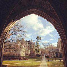 From our friends at Princeton  @princeton_university - Looking onward. | #Princetagram #goviewyou