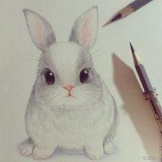 Картинка с тегом «drawing, cute, and rabbit»