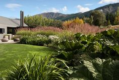 91 Beplantning Ideas Landscape Design Garden Design Landscape
