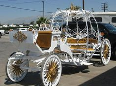 Yes. I want a cinderella carriage for my wedding