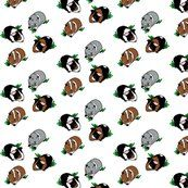 Guinea Pigs - my daughters favorites #spoonflower