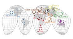 Ancestral humans and their extinct relatives had much more DNA than do people today, a new study finds. It mapped genetic differences over time among 125 different human groups.