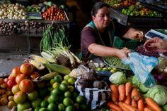 Según el balance realizado por el Sistema de Información de Precios y Abastecimiento del Sector Agropecuario (Sipsa), adscrita al Dane, el 2015 fue un año Pickles, Cucumber, Food, Food Items, Essen, Meals, Pickle, Yemek, Zucchini