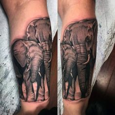 Guys Forearms Mother And Child Elephant Tattoo