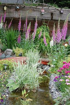 They have food (seeds/leaves), shelter, water, cover in this backyard Habitat Flower Garden, Witch Garden, Fountains Backyard, Backyard Water Feature, Garden Planing, Ponds Backyard, Habitat Garden, Outdoor Gardens, Backyard