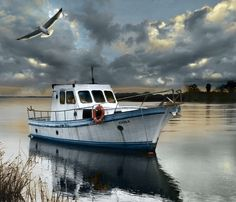 A look at Delta del Ebro by Francisco García Ramírez on City Landscape, Landscape Photos, Landscape Paintings, Delta Del Ebro, Awsome Pictures, Boat Art, Old Boats, Life Aquatic, Boat Painting