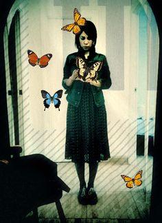 ♥ mariposas