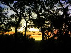Deer Island, Cedar Key, Cedar Key Florida, Florida, Sunset, Photography, Wall Art, Art, Photo Art, Home Décor, Wall Décor, Print, Framed Print, Canvas Print, Acrylic Print, Metal Print, Greeting Cards, Posters