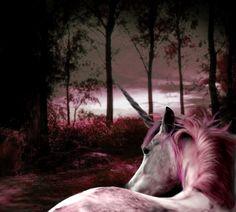pink unicorn, yup see Jenn. Real Unicorn, The Last Unicorn, Unicorn Horse, Unicorn Art, Magical Unicorn, Magical Creatures, Fantasy Creatures, Beautiful Creatures, My Fantasy World