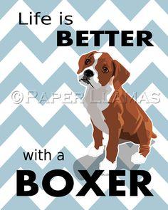 Boxer dog art print  Dog Prints