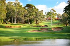 Lake Karrinyup Country Club the dreaded Hole Green Grass, Western Australia, Golf Clubs, Lush, Golf Courses, Wildlife, Characters, Cars, Country