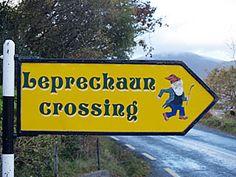 St. Patrick's Day ~ Leprechaun Crossing sign in Ireland
