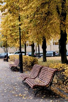 Beautiful Autumn in Helsinki | Photo: Jenni Rotonen / Pupulandia