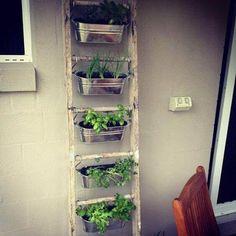 jardim suspenso criativo em escada com ganchos
