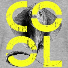 Looking for a really COOL shirt? Or just want to stay COOL under any circumstances? Either way, this COOL design from our grungy Black&White vintage collection is for you: Wear it, feel it, be it! I Am The One, Stay Cool, Neon Yellow, Cool Shirts, Cool Designs, Typography, Colours, Black And White, Cool Stuff