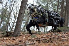 AlphaDog - Military autonomous robot