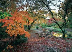 country side gardens - Iskanje Google