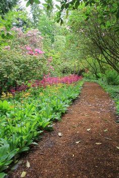 Garden path Wood Walkway, Funky Junk Interiors, Woodland Garden, Garden Supplies, Garden Paths, Pathways, Wood Pallets, Spring Time, Shrubs