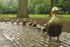 Make Way for Ducklings Artist: Nancy Schön Location: Boston Public Garden, near Beacon St. and Charles St.  Year: 1987 Medium: Bronze Funders: Friends of the Public Garden Description: A favorite Boston landmark, this sculpture by Nancy Schön was created in 1987 to celebrate the 150th anniversary of the Public Garden. It pays tribute to Robert McCloskey's popular children book, written in 1941, about a family of ducks who make their home here.  Photo by Kalman Zabarsky